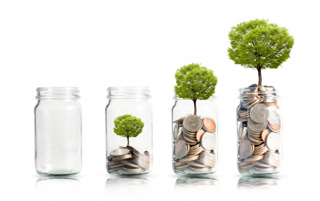 money-coins-tree-growing-jar_50039-1080